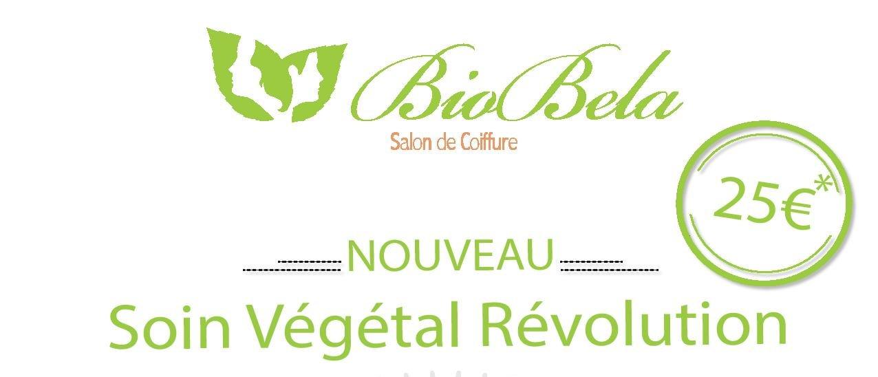 affiche vegetal header