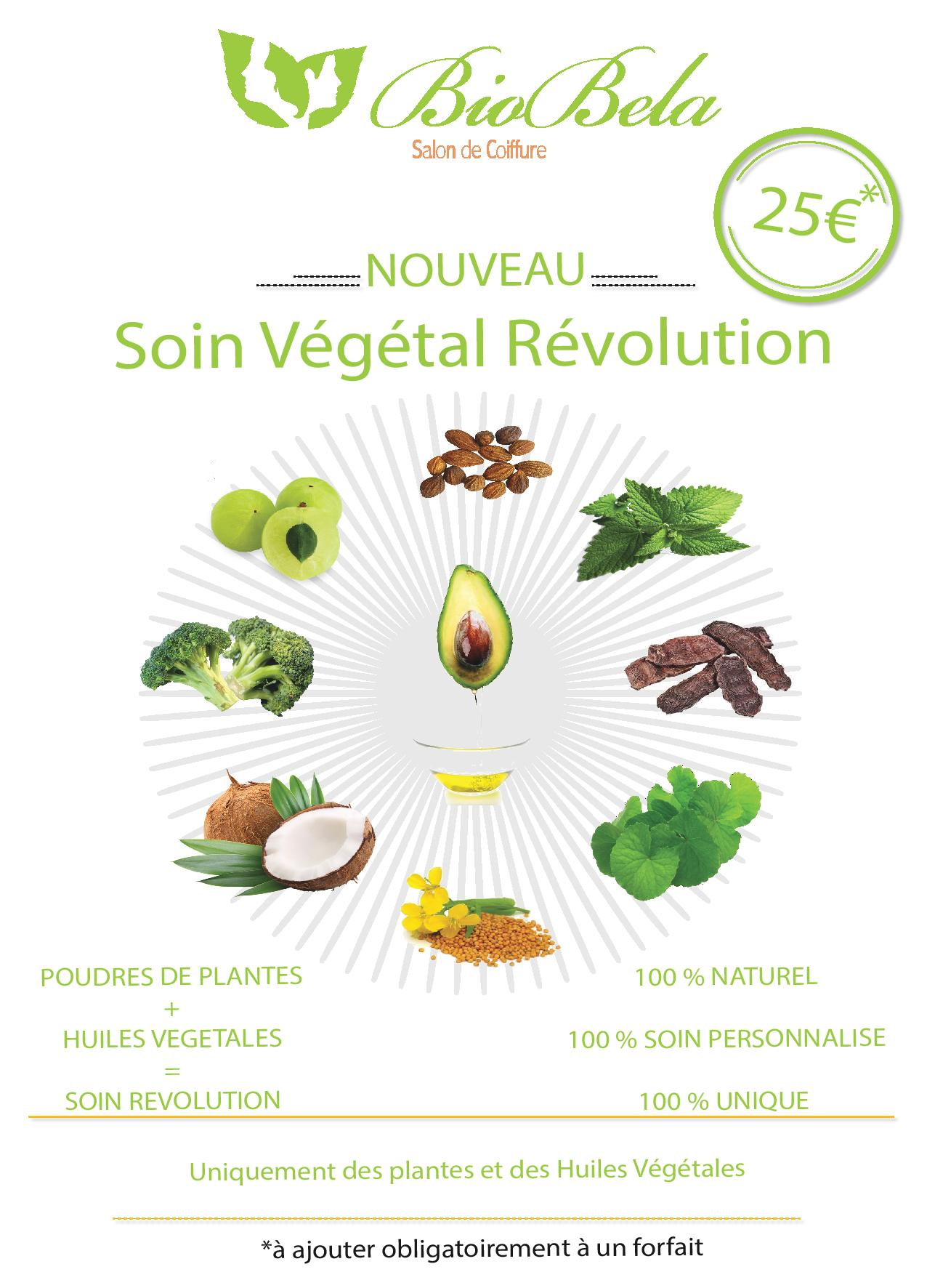 Affiche A4 soin vegetal-page-001